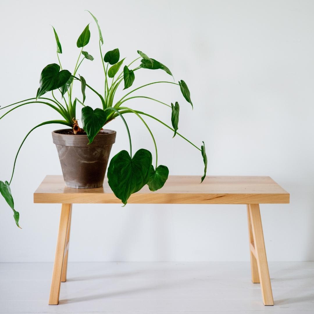 plantenpot op een bijzetter